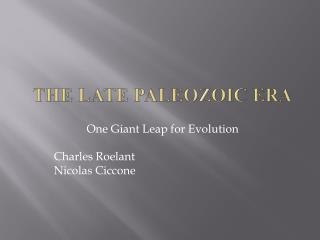 The LATE Paleozoic Era