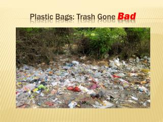 Plastic Bags: Trash Gone  Bad