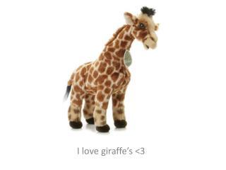 I love giraffe's <3