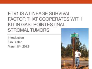 ETV1 is a lineage survival factor that cooperates with KIT in gastrointestinal  stromal  tumors