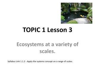 TOPIC 1 Lesson 3