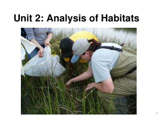 Unit 2: Analysis of Habitats