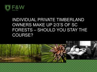Individual Private Timberland owners make up 2/3's of SC Forests – should you stay the Course?