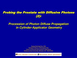 Probing the Prostate with Diffusive Photons (2):