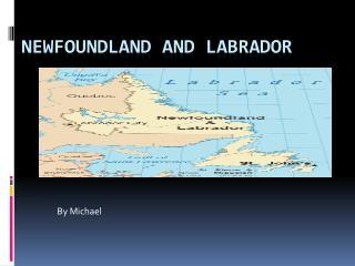 Newfoundland and  L abrador