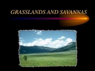 GRASSLANDS AND SAVANNAS
