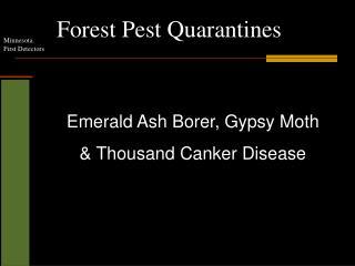 Forest Pest Quarantines
