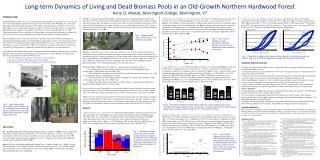 Long-term Dynamics of Living and Dead Biomass Pools in an Old-Growth Northern Hardwood Forest