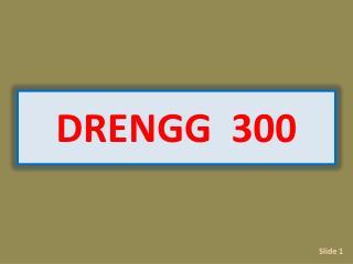 DRENGG  300