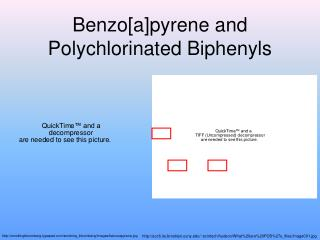 Benzo[a]pyrene and Polychlorinated Biphenyls