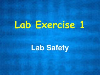 Lab Exercise 1