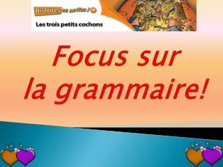 Focus sur  la grammaire!