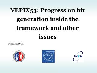 VEPIX53: Progress on hit generation inside the framework and other issues