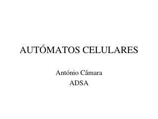 AUTÓMATOS CELULARES