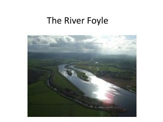 The River Foyle