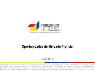Oportunidades de Mercado Francia Junio 2013