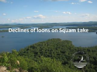 Declines of loons on  Squam  Lake