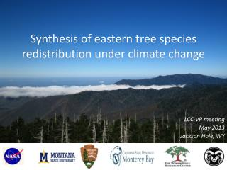 Synthesis of eastern tree species redistribution under climate change