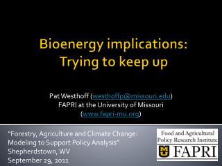 Bioenergy  implications:  Trying to keep up