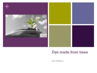 Dye made from trees