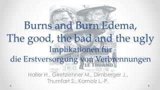 Haller H., Giretzlehner M., Dirnberger J., Thumfart S., Kamolz L.- P.