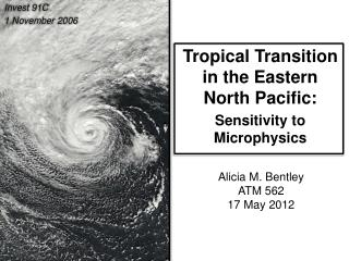 Tropical Transition in the Eastern  North Pacific: Sensitivity to Microphysics