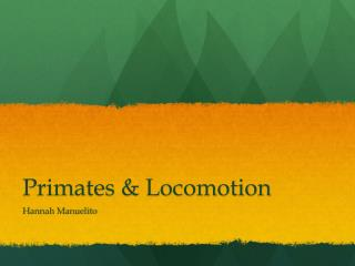 Primates & Locomotion