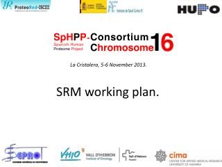 SRM working plan.