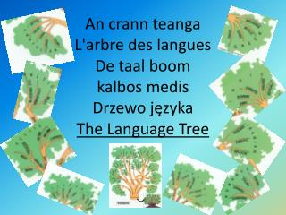 An crann teanga L'arbre des langues De taal boom kalbos medis Drzewo języka The Language Tree