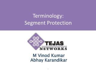 Terminology:  Segment Protection
