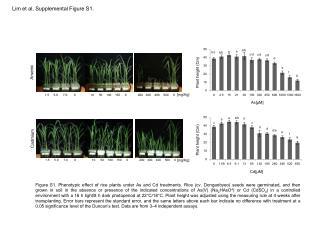 Lim et al,  Supplemental Figure S1.