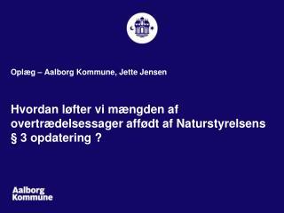 Opl�g � Aalborg Kommune, Jette Jensen
