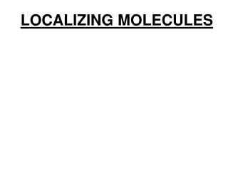 LOCALIZING MOLECULES