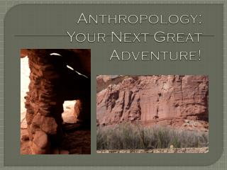 Anthropology:  Your Next Great Adventure!