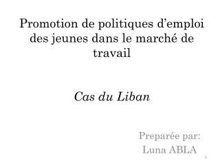 Promotion de  politiques d'emploi  des  jeunes dans  le  marché  de travail Cas  du  Liban