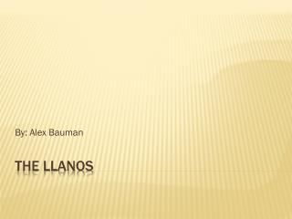 The Llanos