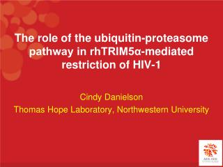 The role of the ubiquitin-proteasome pathway in rhTRIM5α-mediated restriction of HIV-1