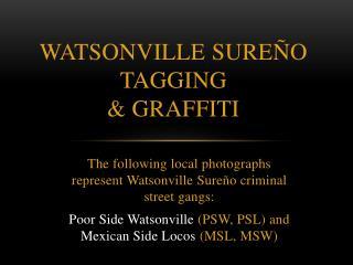 WatsonvilLe Sure�o TagGING &  GRAFFITI