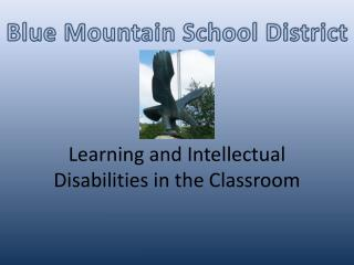 Learning and Intellectual Disabilities in the Classroom