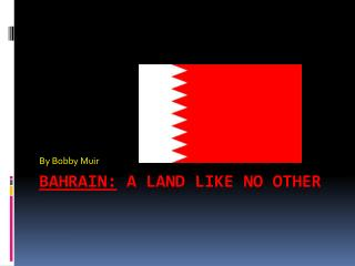 Bahrain:  A Land like no other