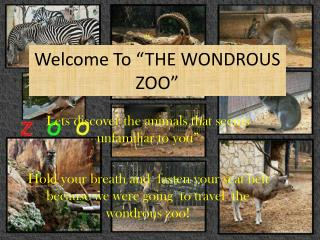 """Welcome To """"THE WONDROUS ZOO"""""""