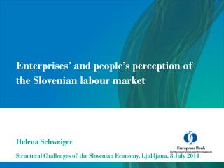 Enterprises� and people�s perception of the Slovenian  labour  market