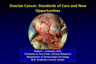 Ovarian Cancer: Standards of Care and New Opportunities