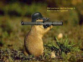 Did you know the S in George S. Patton was for squirrel?