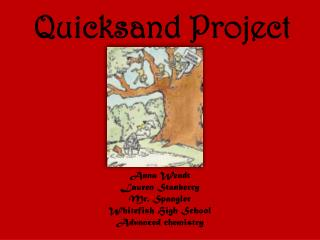 Quicksand Project