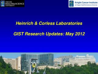 Heinrich & Corless Laboratories GIST Research Updates: May 2012