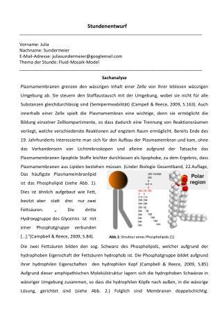Abb.1:  Struktur eines  Phospholipids  [1]