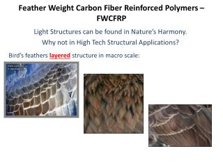Feather Weight Carbon Fiber Reinforced Polymers   FWCFRP