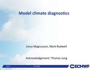 Model climate diagnostics