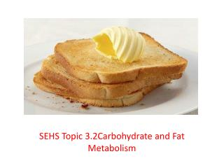 SEHS Topic 3.2Carbohydrate and Fat Metabolism